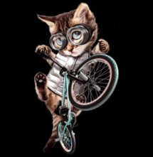 magliette t-sharks.com - BMX CAT