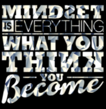 magliette t-sharks.com - Mindset is Everything